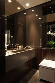 Contemporary Powder Room Designs 97 Best Restrooms Images On Pinterest Bathroom Ideas Room And