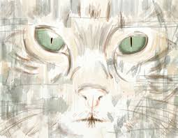 free images portrait cat sketch drawing illustration chat