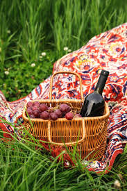 Wine Picnic Basket Picnic Basket With Wine Bottle And Grapes On Green Grass Lawn