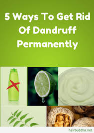 things to get rid of 5 ways to get rid of dandruff permanently hair buddha