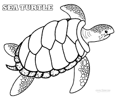 turtle coloring pages for kids printable funny coloring