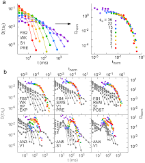 spike avalanches exhibit universal dynamics across the sleep wake