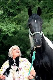 The Healing Barn The Healing Horses Of Equine Therapy New Hampshire Magazine