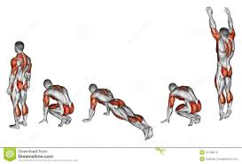 Muscles Used During Bench Press Exercising Burpee Stock Illustration Image 47139270