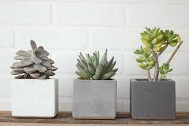 small planter small table planter concrete wave design concrete countertops