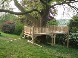 Building A Zip Line In Your Backyard by Best 25 Tree Deck Ideas On Pinterest Orchard Design Tree House