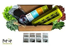 amazon com all in one organic vegetable home garden container