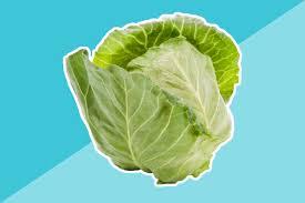 vegetable plants to start indoors before spring reader u0027s digest
