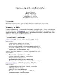 vita resume example professional curriculum vitae resume template for all job seekers broker agent sample resume edi developer sample resume throughout life insurance agent resume