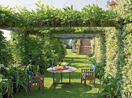 Oak Trellis 25 Garden Trellises And Pergolas Perfect For Summer Relaxation