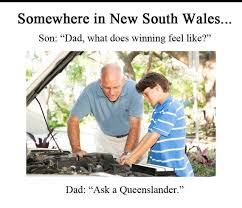 Will Ferrell Meme Origin - winning jokes state of origin pinterest