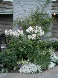 Landscape Nurseries Near Me by Garden Nurseries Near Me It U0027s Not Work It U0027s Gardening Tip