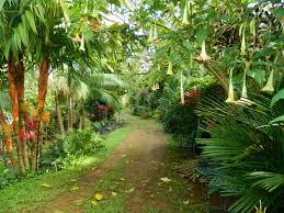 smith family garden luau princeville botanical gardens kauai hawaii aho nui gardens 2014
