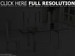 Clear Dining Room Table by Clear Acrylic Dining Table Home Design Ideas