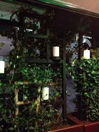 decor dreams u0026 schemes trellis ivy and candlelight a delightful