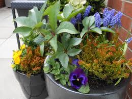 spring gardening tips erbology