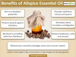 Essential Oils For Hair Loss 10 Best Benefits Of Allspice Essential Oil Organic Facts
