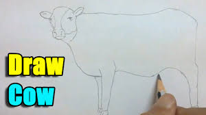 easy of cow the best cow 2017