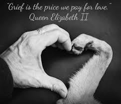 grieving loss of pet grief is the price we pay for helping heal the grief of pet