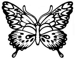 detailed butterfly coloring pictures detailed butterfly