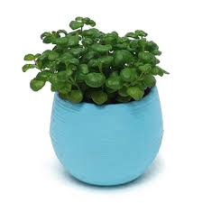 Wholesale Suppliers For Home Decor Flower Pots In Bulk Sheilahight Decorations