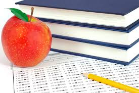 teacher u0027s notes advanced placement means high classes