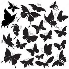 set of silhouettes of butterflies u2014 stock vector wikki33 3567532