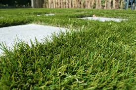M M Landscaping by Royal Grass Stepping Stones With Royal Grass Xl 65 Mm Royal