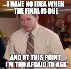 Wtp Internet Meme - i have no idea when the final is due and at this point i m too