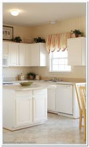 cabinet ideas for kitchens small kitchen design malaysia kitchen cabinet malaysia espresso