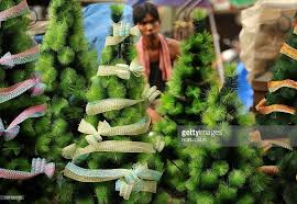 a vendor walks through trees o pictures getty images