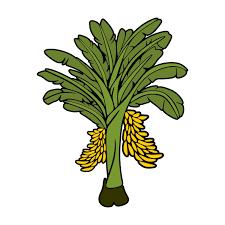 banana tree cuttable design