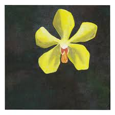 yellow orchid painting yellow orchid kadaiku sabah souvenirs handicrafts