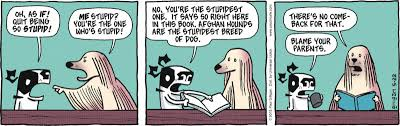 afghan hound stupid comic strip of the day com pets