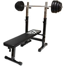 awesome weight bench with dip bar part 11 dip dipping station