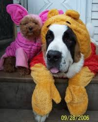 family pets all dressed for halloween stuffed animals