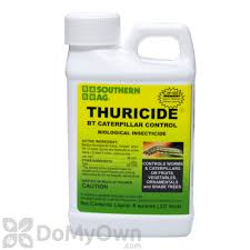 Insecticide For Vegetable Garden by Southern Ag Thuricide Hpc Concentrate
