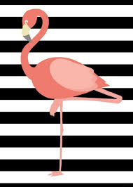 free 5x7 flamingo print flamingo free and flamingo party