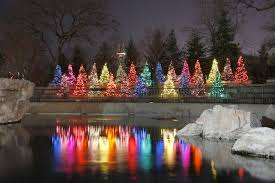 tree lights at the morton arboretum morton arboretum christmas lights christmas decor inspirations