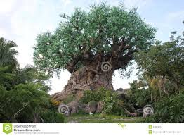 tree of with carved trunk in the disneyworld editorial stock