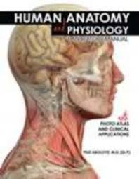 Human Anatomy And Physiology Lab Manual Marieb Human Anatomy And Physiology Laboratory Manual With Photo Atlas