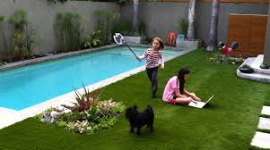 best lawn for small backyard pool and grass design theydesign