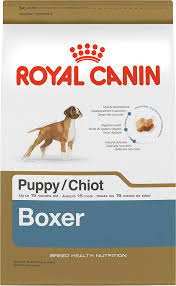 boxer dog 10 months royal canin boxer puppy dry dog food 30 lb bag chewy com