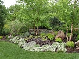 Pics Of Backyard Landscaping by 108 Best Berm Landscaping Images On Pinterest Landscaping Front
