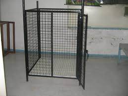 belgian shepherd for sale philippines for sale 3x3 collapsible dog cage see pictures to appreciate