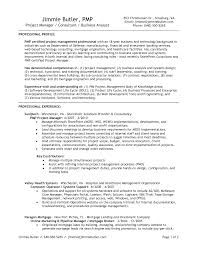 Pmo Sample Resume by Resume Samples For Banking
