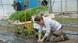 chambre agriculture bretagne la piste des robots pour réduire la pénibilité du travail agricole