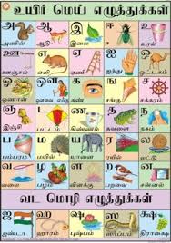 tamil alphabet chart for meeee pinterest alphabet charts