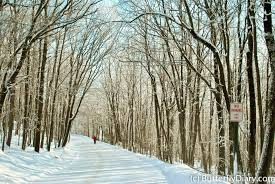 snow pictures in wausau wi photo of the day a walk in rib