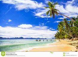 landscape design phoenix tropical landscape design plans nurani org